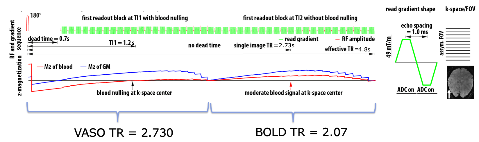SS-SI-VASO Sequence Manual – layer fMRI blog